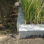 香久山墓園に墓地をお持ちの方、雑草対策はこんなに大切。