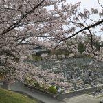 橿原市営香久山墓園にてお墓の新規建立工事が完成しました。
